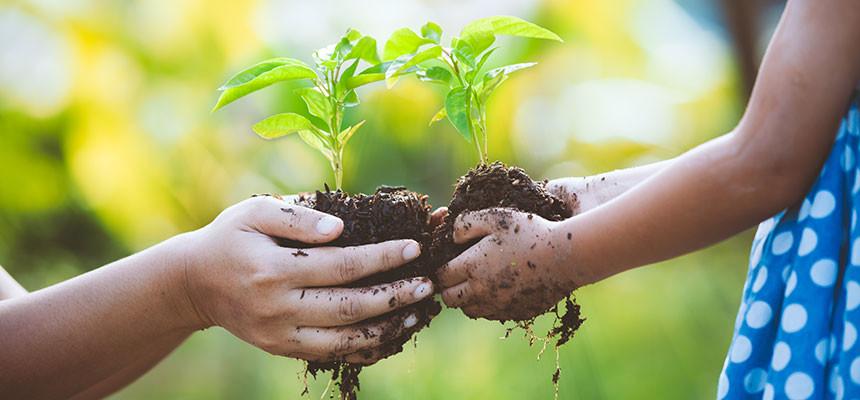 sostenibilità-ambientale Sviluppo sostenibile: cos'è e come funziona la sostenibilità ambientale Energia Solare Energie Alternative Guide Risparmio Energetico